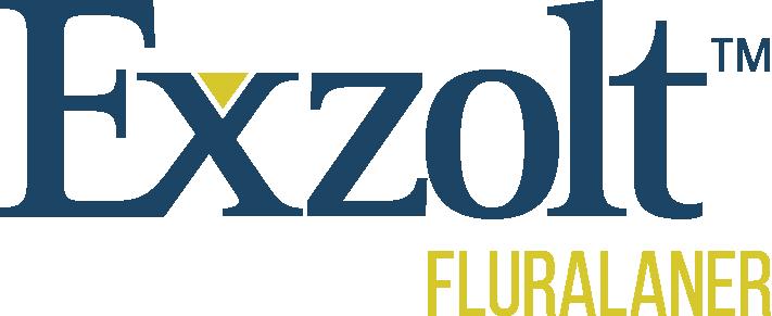 Logo Exzolt